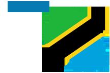 Tanzania Flag01